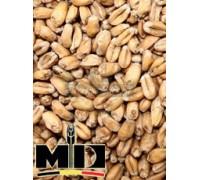 Солод Wheat / Пшеничный (Mouterij Dingemans), 1 кг