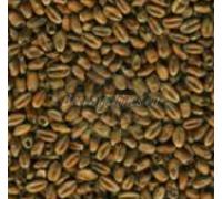 Солод Mroost Wheat / Пшеничный темный (Mouterij Dingemans), 1 кг
