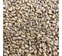 Солод Weyermann Smoked Wheat (Копченый Пшеничный), 1 кг