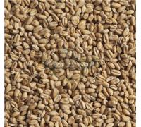Солод Wheat Light (Stamag), 1 кг