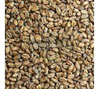 Солод Weyermann Wheat Dark (Пшеничный темный), 1 кг