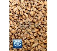 Солод Soufflet Wheat (Пшеничный), 1 кг