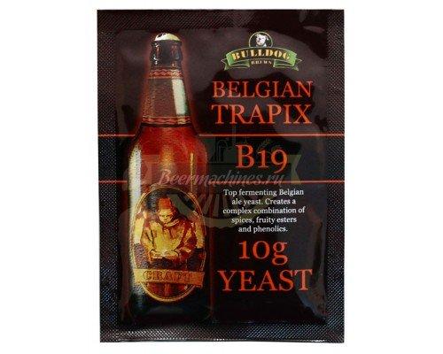 Сухие пивоваренные дрожжи BullDog B19 Belgian Trapix, 10 г