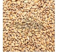 Солод Weyermann Pale Wheat (Пшеничный светлый), 1 кг